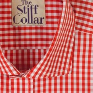 Red Gingham Regular Fit Shirt